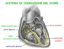 pacemaker2
