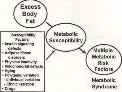 sindrome-metabolica1